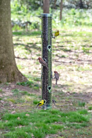 "Classic 30"" Sunflower/Mixed Seed Bird Feeder"