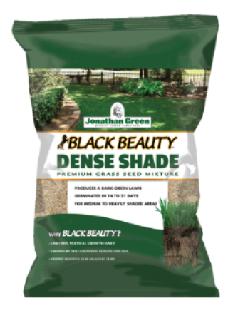 Black Beauty® Dense Shade Grass Seed