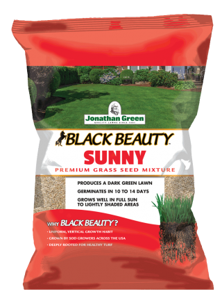 Black Beauty® Sunny Grass Seed