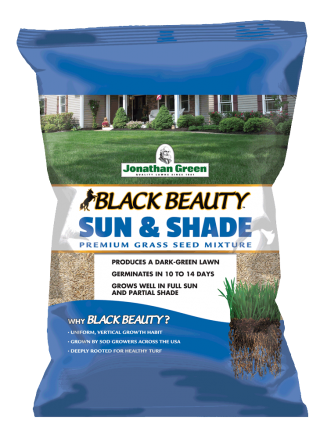 Black Beauty® Sun & Shade Grass Seed