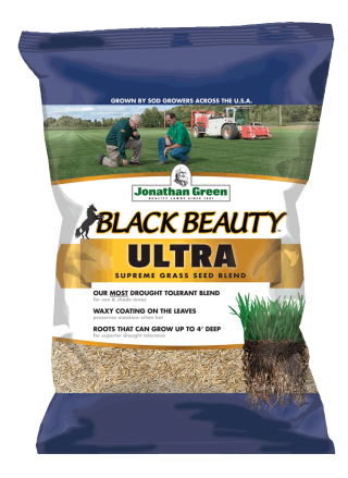 Black Beauty® Ultra Grass Seed