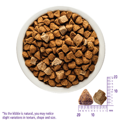 Wellness CORE RawRev Grain Free Small Breed + Freeze Dried Turkey
