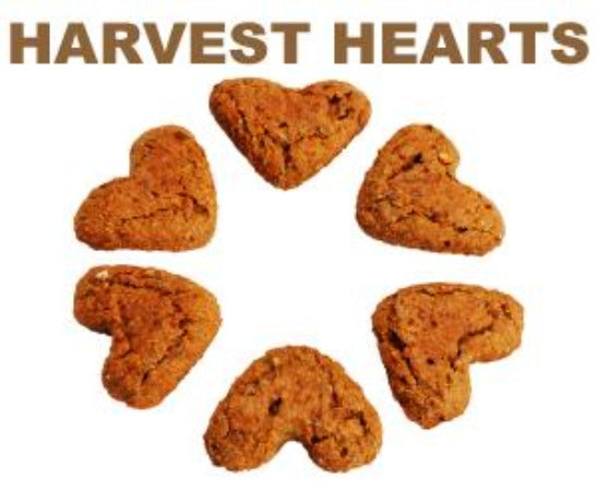 Pawduke Harvest Hearts 16 oz