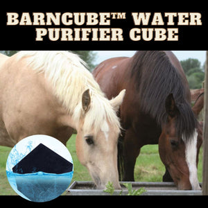 [PROMO 30% OFF] BarnCUBE™ Water Purifier Cube