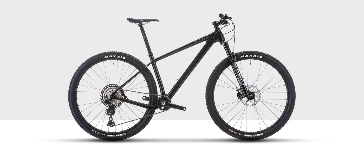Cross country mountain bike, the Vitus Rapide