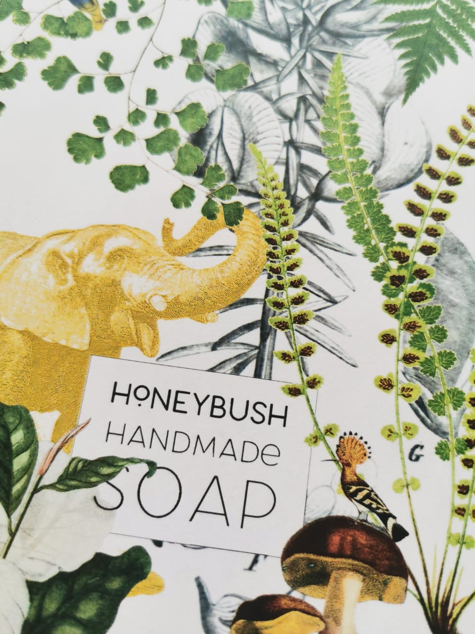 Knysna Forest Soap Parcel - Honeybush