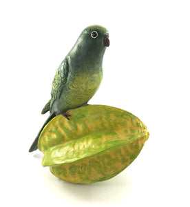 Green Parrot on Star Fruit
