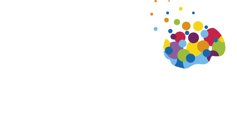 Amazing Brains