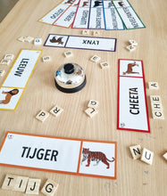 Load image into Gallery viewer, Word Cards: Wild Cats