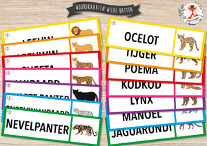 Word Cards: Wild Cats