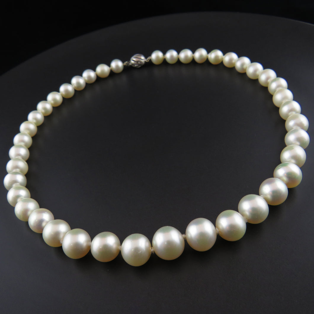 South Sea Pearl Strand