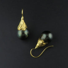 Load image into Gallery viewer, Tahitian Drop Pearl Earrings