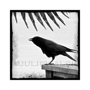 Chatter Photo Panel-Photo-WorkShopGallery