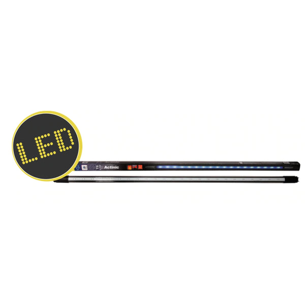 Tube Led Aqua One Actinic 60cm