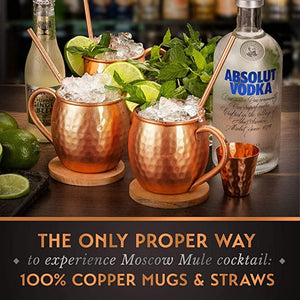 Copper Moscow Mule Copper Handle set of 4