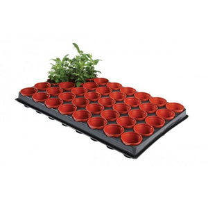 Seed And Cutting Tray With 40 Pots