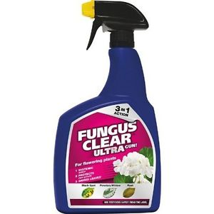 Fungus Clear Ultra 1L RTU  & 225ml Concentrate
