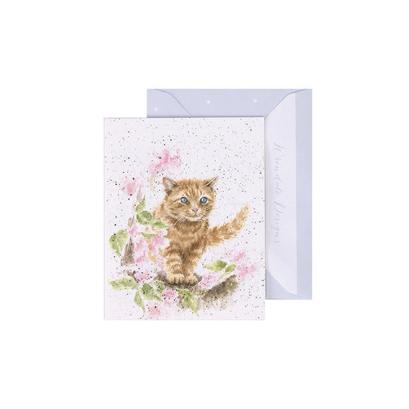 The Marmalade Cat Enclosure Card