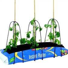 Grow Bag Cane Support Frame