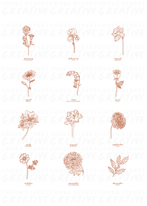 All Birth Month Flowers | Print
