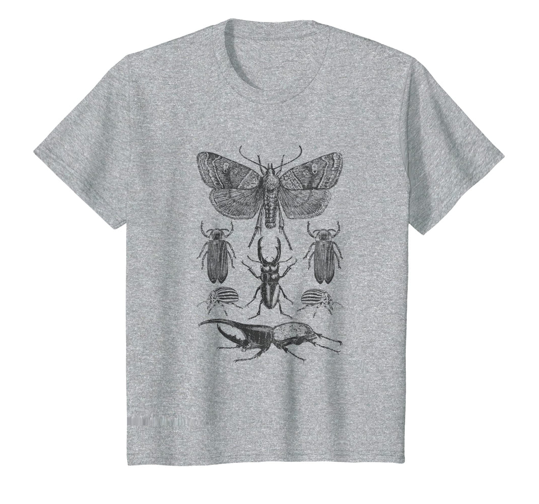 Funny shirts V-neck Tank top Hoodie sweatshirt usa uk au ca gifts for Insect Bug Collection Shirt Moth Stag Beetle Cicada T-Shirt 1209006