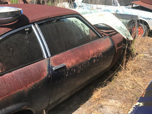 1974 Chevrolet (Chevy) Vega Righthand Door