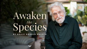 Neale Donald Walsch - Awaken The Species - Mindvalley