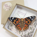 VLD Painted Lady Embroidered Butterfly Brooch