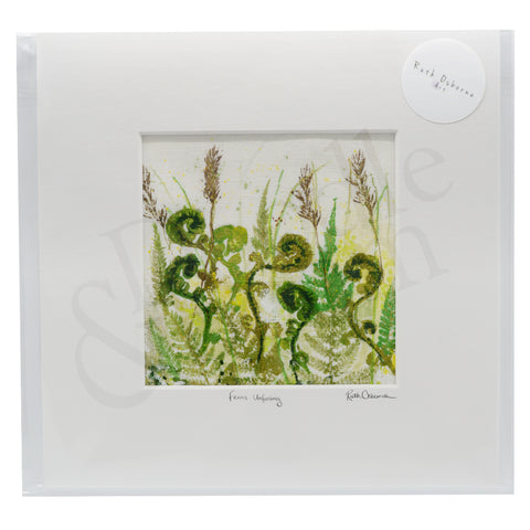 Ruth Osborne Unframed Original - Ferns Unfurling