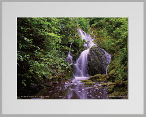 PRM Mounted Photo Print-Crawfordsburn Country Park