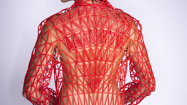 3D Printed Clothes