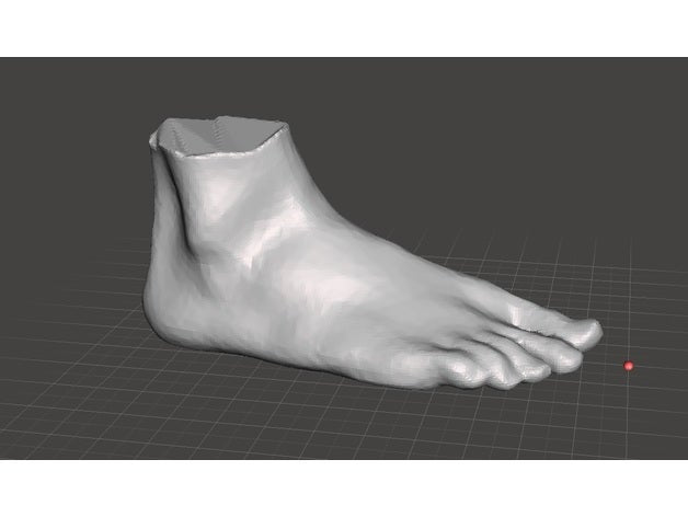 Standard Foot Scans by oliverbrossmann5