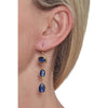 Bountiful Blue Earrings