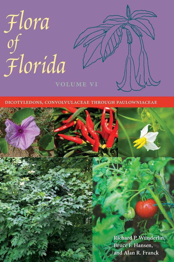 Flora of Florida, Volume VI: Dicotyledons, Convolvulaceae through Paulowniaceae