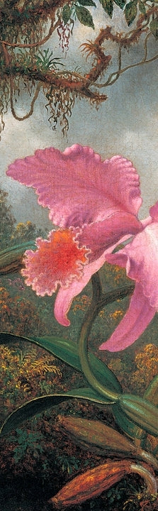 Bookmark - Orchid and Hummingbird