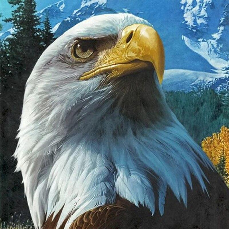 Eagle DIY 5D Cross Stitch Full Square Round Diamond Painting