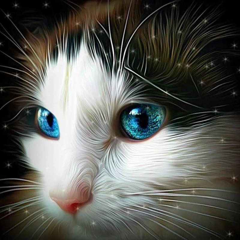 Diy 5D Diamond Painting Cat Face With Blue Eyes Needlework Diamond Embroidery