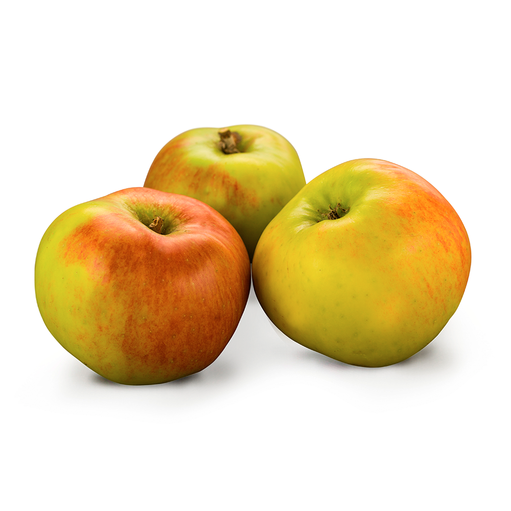 Apple | Bramley | Each