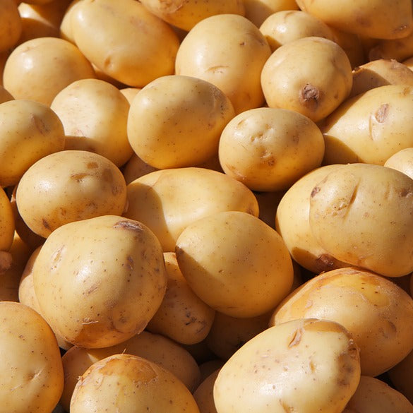 Potatoes, Yukon Gold - Local and Organic