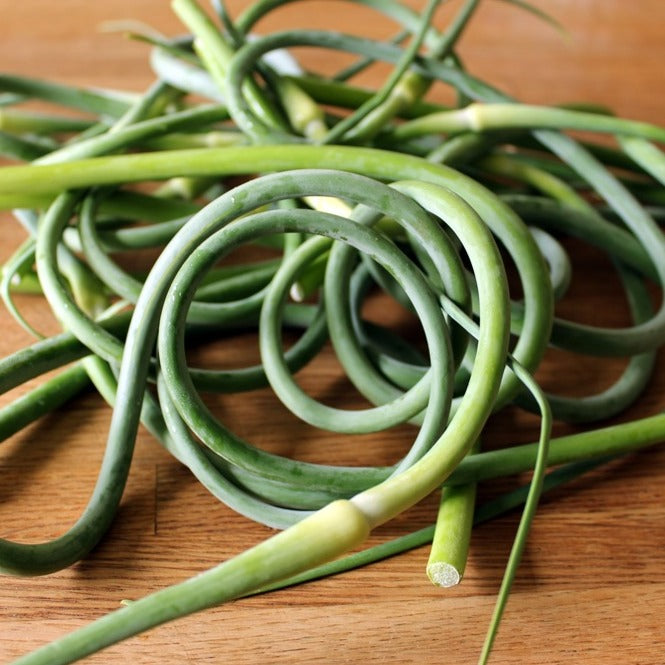 Garlic Scapes!