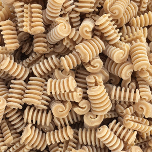 Sfoglini Pasta! Whole Grain Radiators, Organic