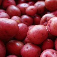 Potatoes, Red - Sawyer Farm - 2lbs