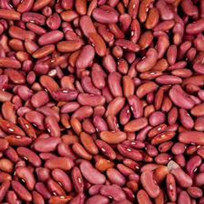 Beans, Light Red Kidney - LOCAL - 2lbs