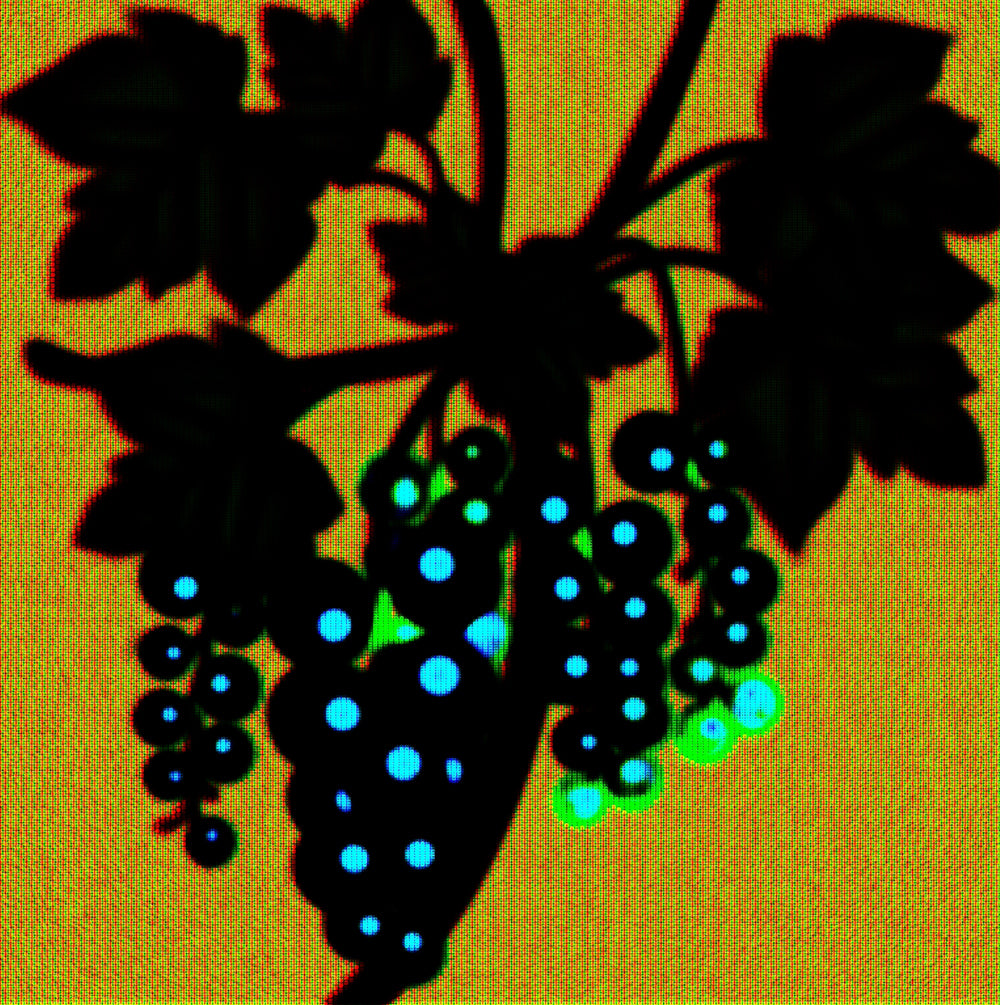 Berries Series No.7