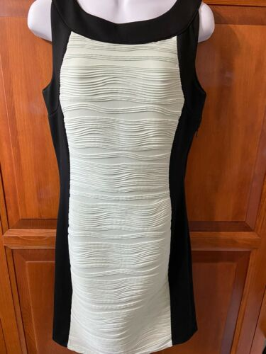 Women's Calvin Klein Dress Sleeveless Side Zip Black/Light Green Lined Sz6