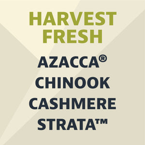 Can Pack #7: 2020 Harvest Fresh