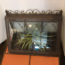 Load image into Gallery viewer, NEW Tabletop Terrarium
