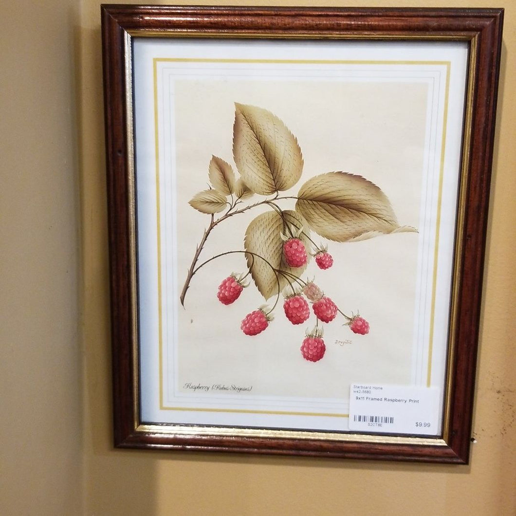Framed Raspberry Print