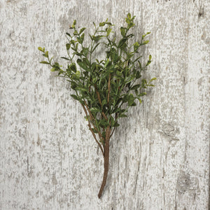 "NEW Floral Pick - 13"" Boxwood - 100737"