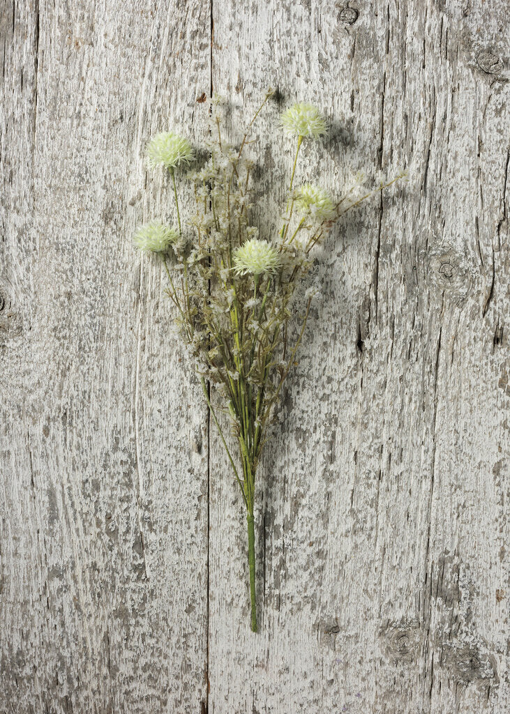 NEW Pick - Thistle Mix White - 102498